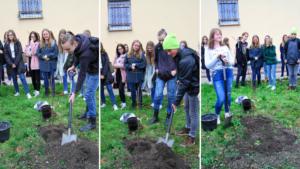 Uczniowie sadzą drzewo